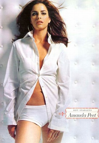 amanda peet shirt open